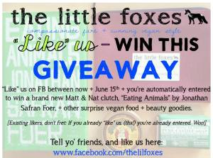 little foxes giveaway